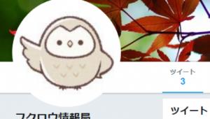 フクロウ情報局のTwitterアカウント作りました!そして即ロックされました笑-アイキャッチ