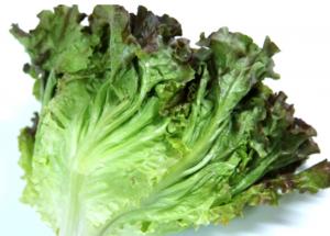 【健康系】3分でできるチョレギサラダ!太白ごま油とエリスリトールで!-アイキャッチ